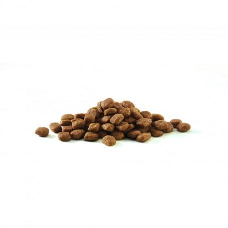 Croquetas de pienso Purina One Gato Adulto rico en Salmón y Cereales Integrales