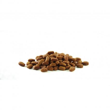 Croqueta pienso Purina One Gatos Esterilizados rico en Buey y Trigo
