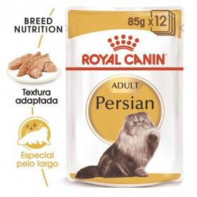 Royal Canin Razas Comida Molhada gato