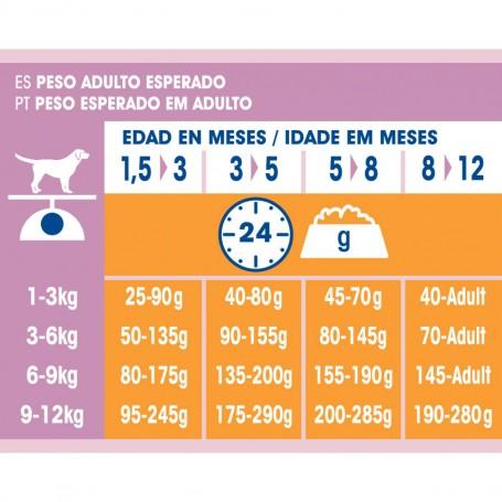 Ración de pienso Purina Dog Chow Cachorro Raza Pequeña con Pollo