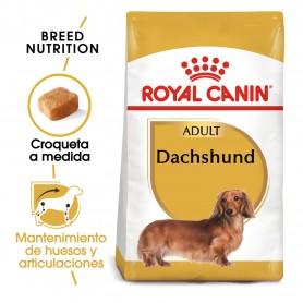 Royal Canin Dachshund Teckel