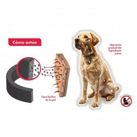 Canishield Collar antiparasitario Triple Protección para Perros 65 cm