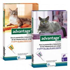 Ecuphar Antiparasitarios gato