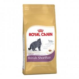 Royal Canin Razas British Shorthair
