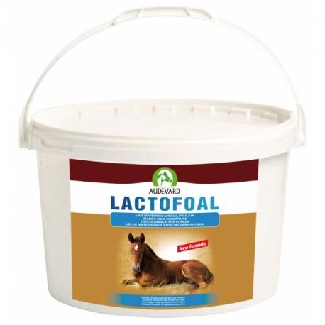 Audevard Lactofoal