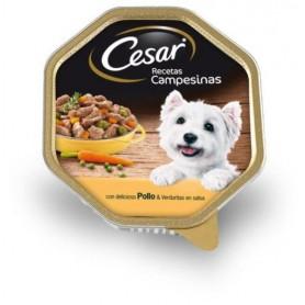 comida húmeda Cesar Campesina Pollo y Verduras