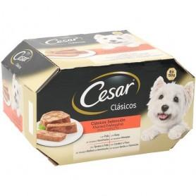 Cesar Clasico con pollo