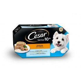 Cesar Senior 10+ Fácil digestión