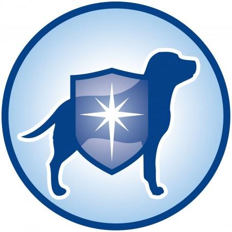 Dog Chow Puppy Pollo, protege a tu cachorro